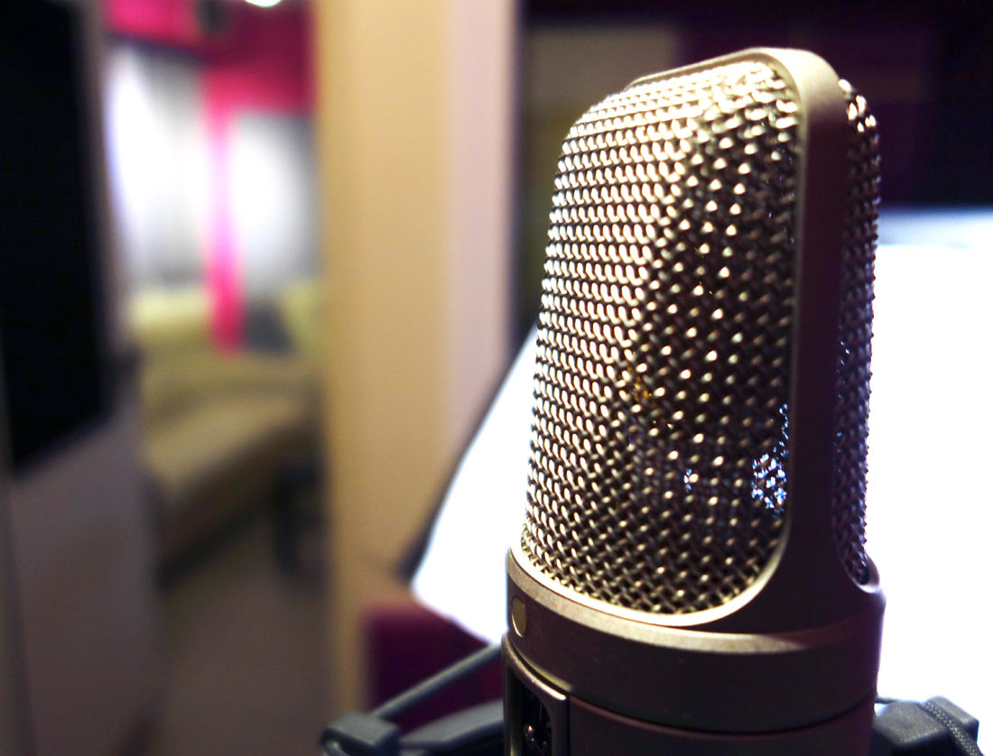 Piranha Studio Microphone